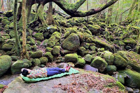 屋久島で、森林浴に温泉に <br>人気のサウナも!