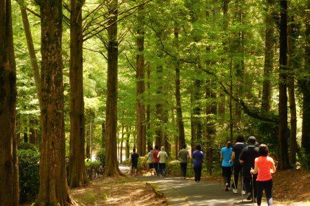 コンシェルジェに委ねる<br>森のリゾートで健康増進